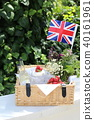 britain, english, uk 40161961