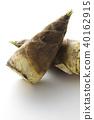 竹筍 春蔬 山野菜 40162915
