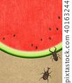 西瓜 水果 牙买加犀金龟 40163244