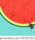 背景 - 日本紙 - 西瓜 - 甲蟲 40163303