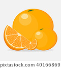 Illustration of fruit set Orange 40166869