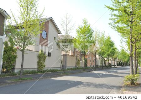 新鮮的綠色城市排列著房子 40169542