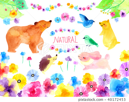 동물과 자연의 일러스트 40172453