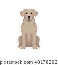 beige muzzle vector 40178292
