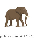 Elephant animal icon of african savanna mammal 40178827