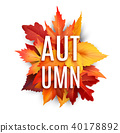 Autumn foliage leaf vector poster of fall leaves 40178892