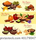 Hot spice banner of natural food ingredient 40179047