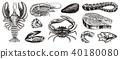 fish sea vector 40180080