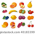 fruits and berries 40183399