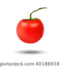 Realistic 3d red tomato isolated on white   40186638
