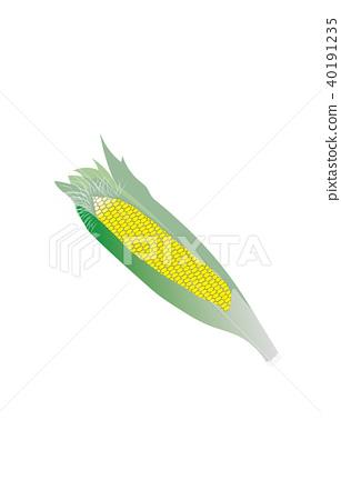 Vegetable corn 40191235