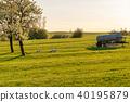French landscape - Vosges 40195879