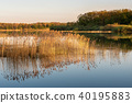 French landscape - Lorraine 40195883
