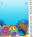 Coral fauna topic image 1 40202397