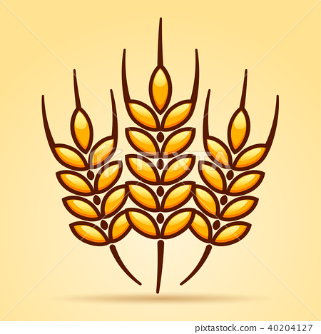 wheat icon isolated on blank background 40204127
