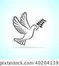 dove icon on white background 40204139