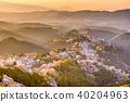 Yoshinoyama, Nara, Japan 40204963