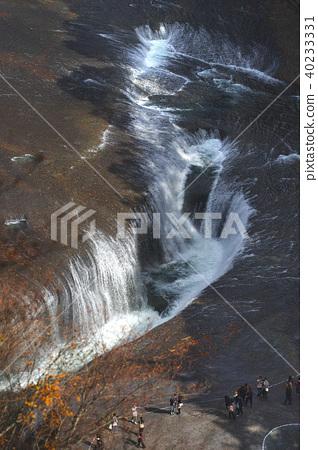 [Autumn autumn season] Autumn leaves of the waterfall of Fukiwari and Fukiwari valley (from Kankeidai) 40233331