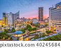 Hamamatsu City, Japan Skyline 40245684