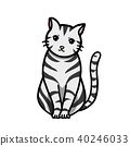 毛孩 貓 貓咪 40246033