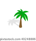 Palm tree icon, isometric 3d style 40248886