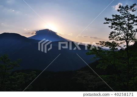 雲上的鑽石富士(佐野葵) 40258171