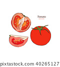 Tomato vector drawing. sliced piece. 40265127