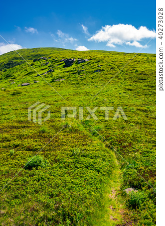 footpath through the grassy hills of the mountain 40273028