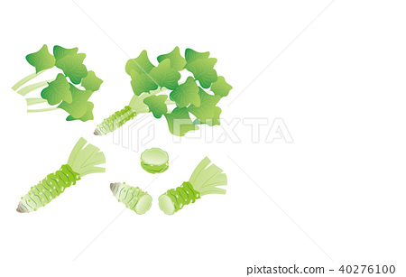 Cut vegetables wasabi 40276100
