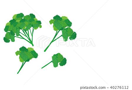 Cut vegetables parsley 40276112