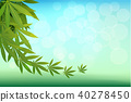 กัญชา,เวกเตอร์,สีเขียว 40278450