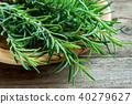 rosemary, background, herb 40279627