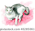 White and gray cats painted by watercolor 40285061
