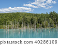 아오이이케, 청의 호수, 연못 40286109