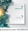 熱帶 樹葉 向量 40288048