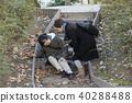 계단에서 넘어진 노인 · 야외 40288488
