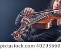 바이올린, 여자, 여성 40293660