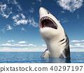 Great white shark 40297197