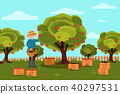Gardener picking apples in basket. Fruit farm. Natural landscape. Wooden boxes with harvest. Flat 40297531