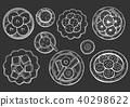 design, vector, drawn 40298622