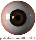 Eyeball brown iris front view 40302014