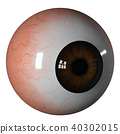 Eyeball brown iris side view 40302015