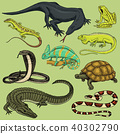 Set of reptiles and amphibians. Wild Crocodile, alligator and snakes, monitor lizard, chameleon and 40302790