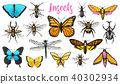Different insects set. Butterfly and dragonfly, bug and pet bee. Mystical symbol of freedom 40302934