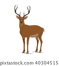 deer animal icon 40304515