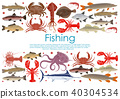 Vector seafood fishing poster of fresh fish 40304534