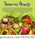 Vector fruits sketch exotic tropical fruit poster 40304783