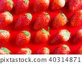 붉은 단색의 배경과 딸기 40314871