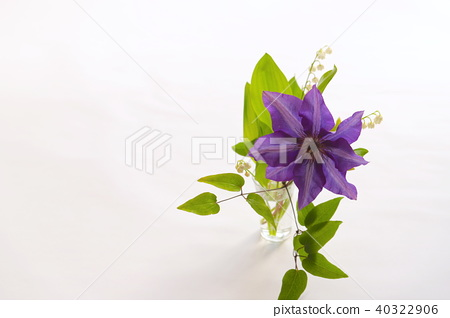 Clematis and lily of the valley 40322906