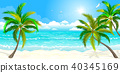 Tropical beach with palm trees 40345169